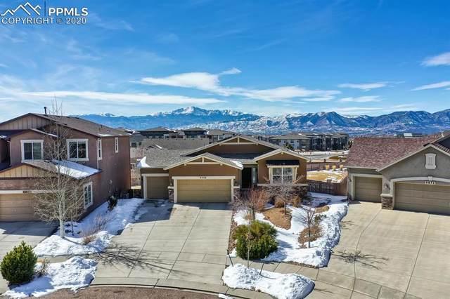 9966 San Luis Park Court, Colorado Springs, CO 80924 (#1617892) :: Action Team Realty
