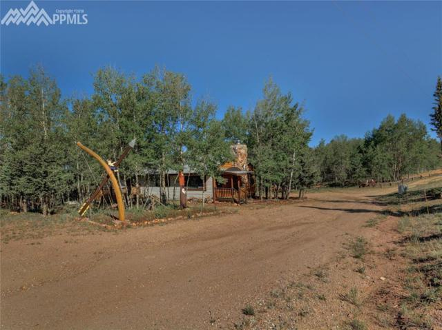 9757 S Highway 67 Highway, Cripple Creek, CO 80813 (#1623810) :: The Peak Properties Group