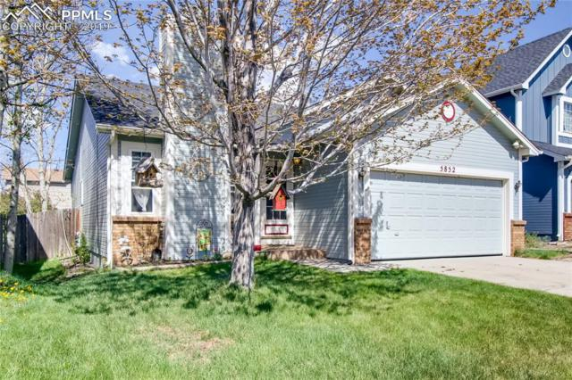 5852 Oakwood Boulevard, Colorado Springs, CO 80923 (#1623922) :: 8z Real Estate