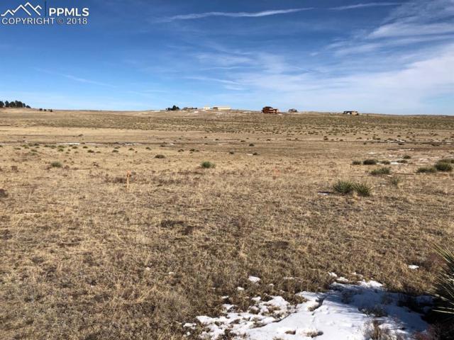 16745 Warriors Path Drive, Peyton, CO 80831 (#1624090) :: 8z Real Estate