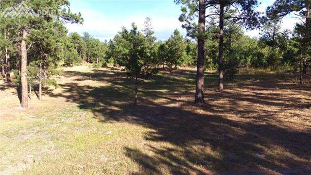 Furrow Drive, Monument, CO 80132 (#1626241) :: 8z Real Estate
