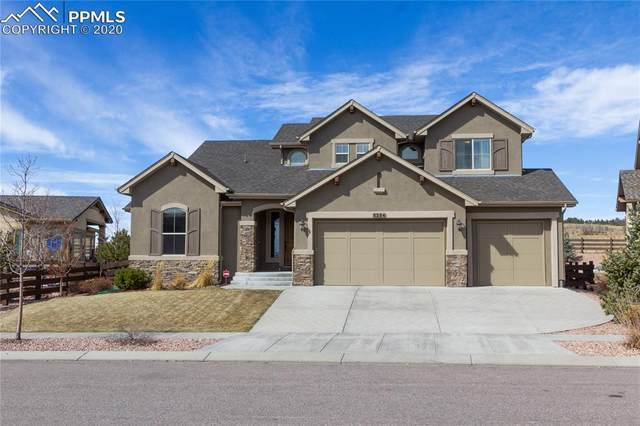 5254 Fraser Valley Lane, Colorado Springs, CO 80924 (#1626911) :: Finch & Gable Real Estate Co.
