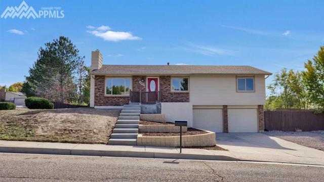 2495 Hollow Brook Drive, Colorado Springs, CO 80918 (#1633689) :: Jason Daniels & Associates at RE/MAX Millennium