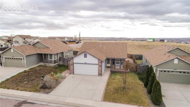 7422 Coral Ridge Drive, Colorado Springs, CO 80925 (#1635031) :: The Dunfee Group - Keller Williams Partners Realty