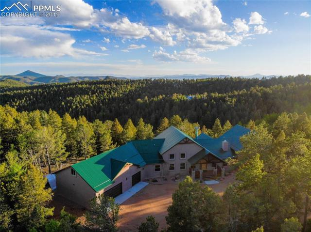 252 Running Elk Point, Divide, CO 80814 (#1635233) :: CC Signature Group