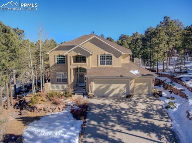 15791 Wildwood Court, Colorado Springs, CO 80921 (#1638882) :: 8z Real Estate