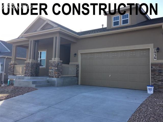 7936 Callendale Drive, Colorado Springs, CO 80908 (#1641270) :: RE/MAX Advantage