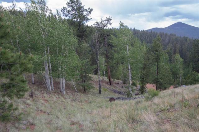 255 Idlewild Drive, Cripple Creek, CO 80813 (#1643178) :: 8z Real Estate