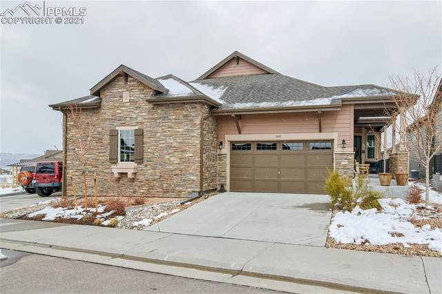 3618 New Haven Circle, Castle Rock, CO 80109 (#1649025) :: The Cutting Edge, Realtors
