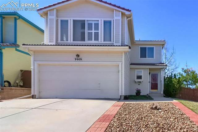 9909 Melbourne Place, Highlands Ranch, CO 80130 (#1653239) :: The Gold Medal Team with RE/MAX Properties, Inc