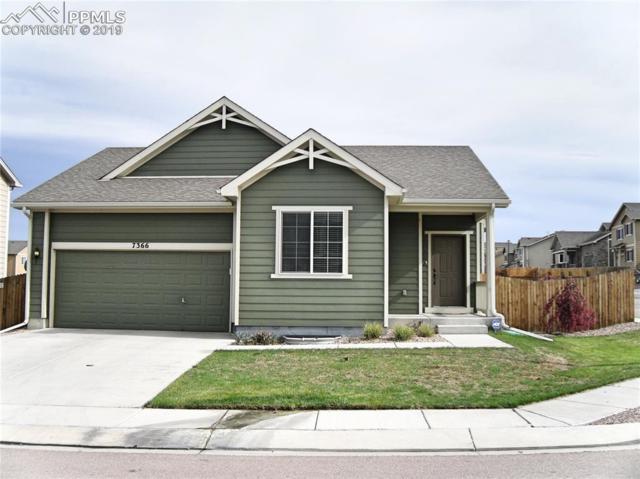 7366 Running Deer Way, Colorado Springs, CO 80922 (#1655820) :: Relevate Homes | Colorado Springs