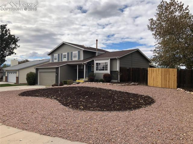 1460 Shadberry Court, Colorado Springs, CO 80915 (#1657419) :: CC Signature Group