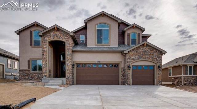 10548 Wrangell Circle, Colorado Springs, CO 80924 (#1663289) :: Tommy Daly Home Team