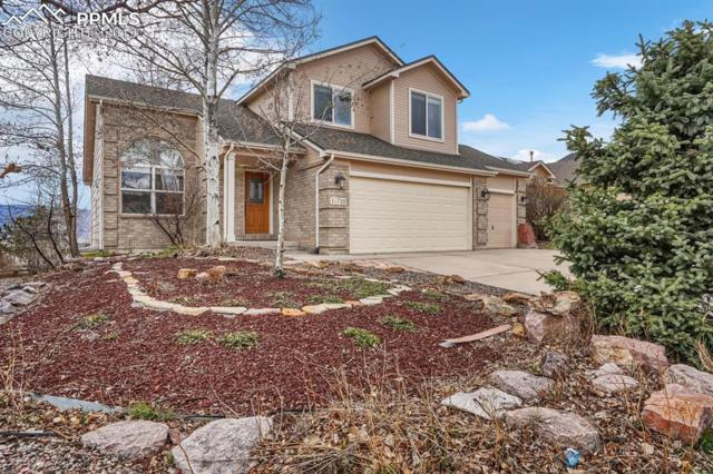 15710 Candle Creek Drive, Monument, CO 80132 (#1664108) :: Tommy Daly Home Team