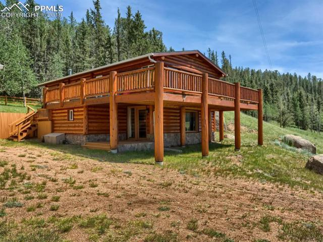 70 E Lake Drive Drive, Divide, CO 80814 (#1664630) :: Tommy Daly Home Team