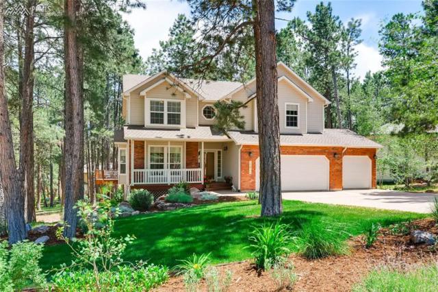 15625 Timberside Court, Colorado Springs, CO 80921 (#1664995) :: 8z Real Estate