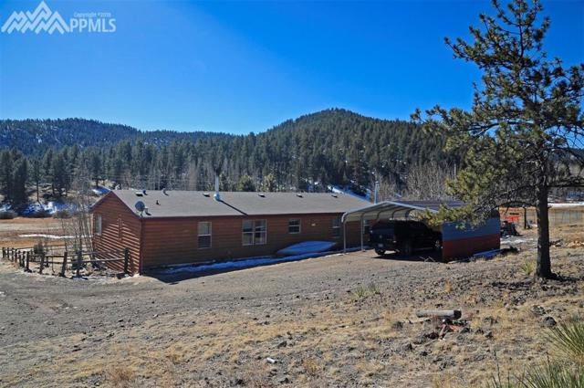 36 Valley Circle, Florissant, CO 80816 (#1666049) :: The Kibler Group