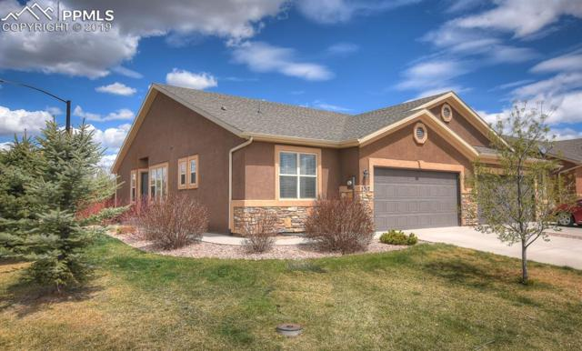 5312 Oak Spring Heights, Colorado Springs, CO 80923 (#1669123) :: CC Signature Group