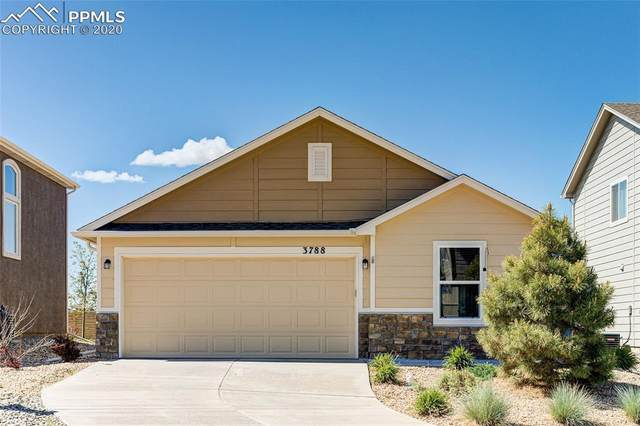 3788 Swainson Drive, Colorado Springs, CO 80922 (#1669349) :: The Treasure Davis Team