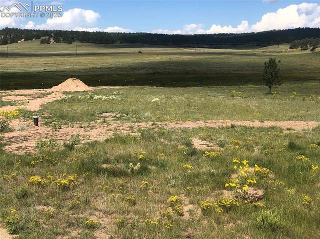567 High Pasture Road, Florissant, CO 80816 (#1672346) :: Action Team Realty