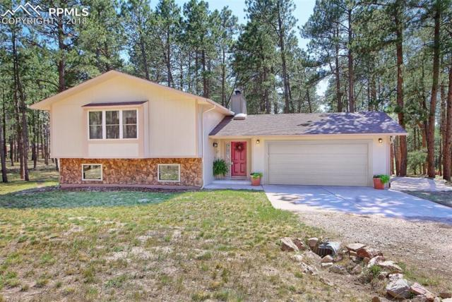 335 E Highway 105 Highway, Monument, CO 80132 (#1673063) :: Action Team Realty