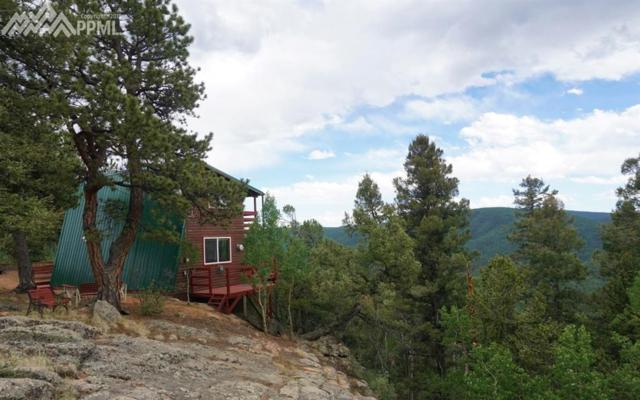 847 Witherite Drive, Divide, CO 80814 (#1673153) :: 8z Real Estate