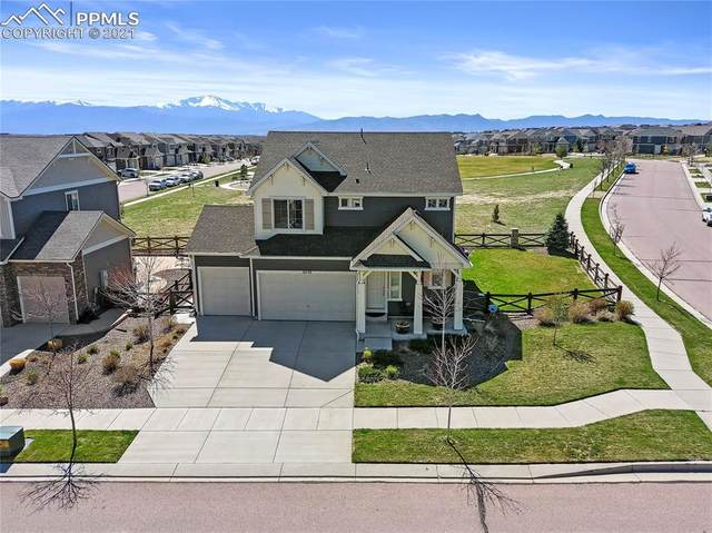 6588 Sugarberry Lane, Colorado Springs, CO 80927 (#1673711) :: Hudson Stonegate Team
