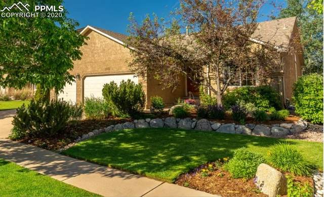 1573 Lookout Springs Drive, Colorado Springs, CO 80921 (#1674525) :: Tommy Daly Home Team