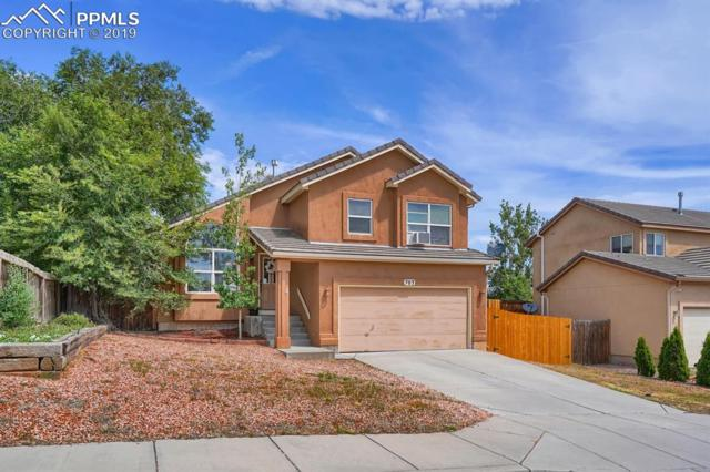 703 Baling Wire Way, Fountain, CO 80817 (#1678738) :: The Daniels Team