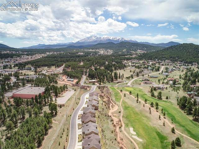 0 Longs Point, Woodland Park, CO 80863 (#1686065) :: CC Signature Group