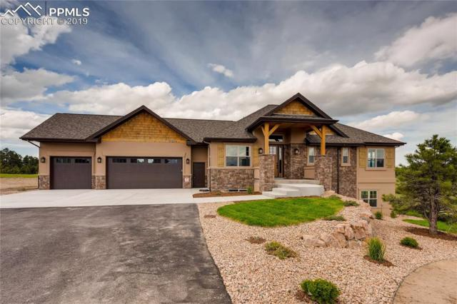 17275 Gwilym Court, Monument, CO 80132 (#1686402) :: Action Team Realty