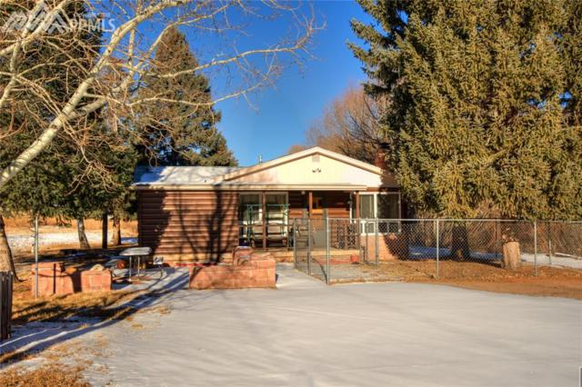 9055 Picabo Lane, Cascade, CO 80809 (#1687809) :: The Dunfee Group - Keller Williams Partners Realty