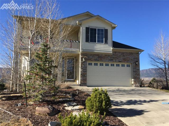 850 Merrimack River Way, Monument, CO 80132 (#1688606) :: The Peak Properties Group