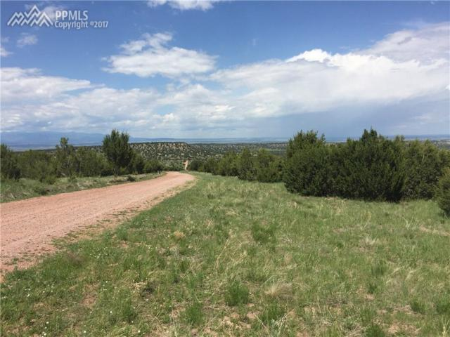 3196 Vaughn View Drive, Pueblo, CO 81005 (#1692585) :: Action Team Realty