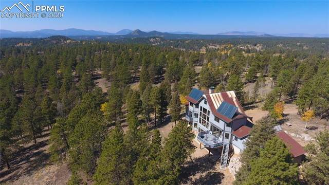 4273 Cedar Mountain Road, Divide, CO 80814 (#1692803) :: The Kibler Group