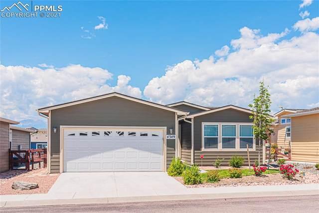 4349 Gray Fox Heights, Colorado Springs, CO 80922 (#1692851) :: The Kibler Group