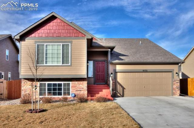 4532 Horse Tooth Road, Colorado Springs, CO 80911 (#1701745) :: Tommy Daly Home Team