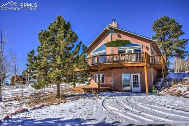55 Crystal Peak Drive, Lake George, CO 80827 (#1702310) :: The Hunstiger Team