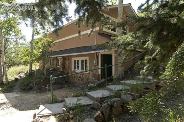 42 Lillooet Lane, Woodland Park, CO 80863 (#1705309) :: Jason Daniels & Associates at RE/MAX Millennium