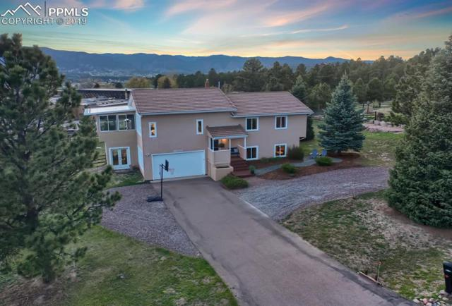 18350 White Fawn Drive, Monument, CO 80132 (#1707544) :: The Treasure Davis Team