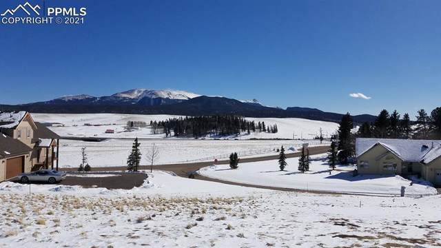 102 Allison Place, Divide, CO 80814 (#1707903) :: 8z Real Estate