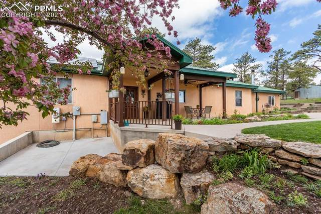 8237 Old San Isabel Road, Rye, CO 81069 (#1709859) :: Action Team Realty
