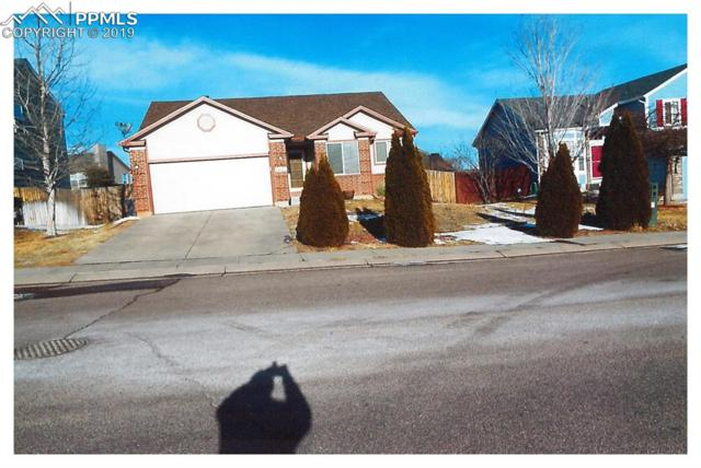 7423 Allens Park Drive, Colorado Springs, CO 80922 (#1713358) :: 8z Real Estate