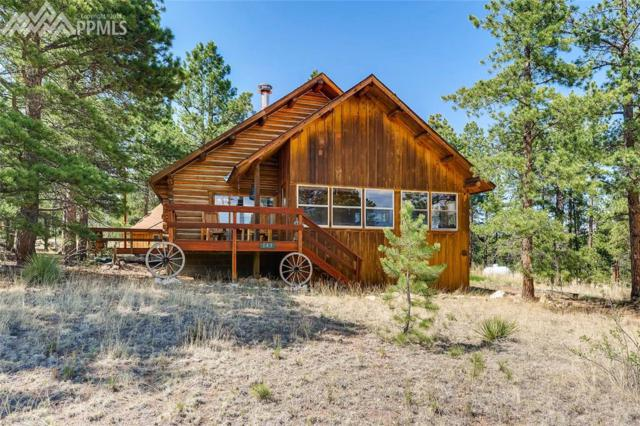 143 Pine Forest Road, Lake George, CO 80827 (#1714249) :: Action Team Realty