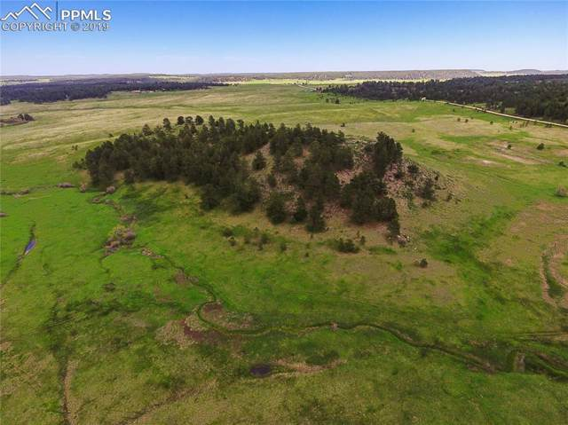 00 County Line Road, Elbert, CO 80106 (#1715486) :: The Kibler Group