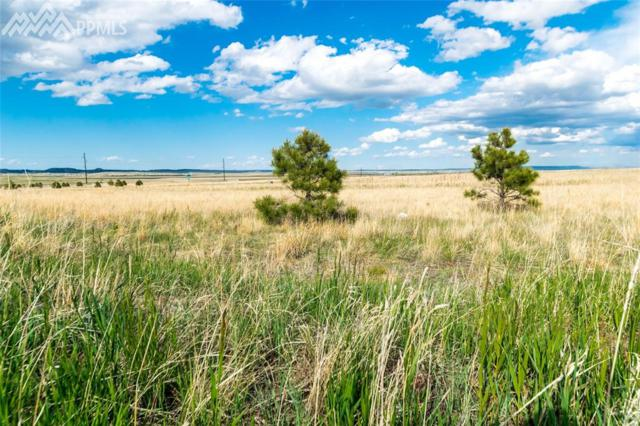 12115 Silver Concho Trail, Elbert, CO 80106 (#1716065) :: Jason Daniels & Associates at RE/MAX Millennium