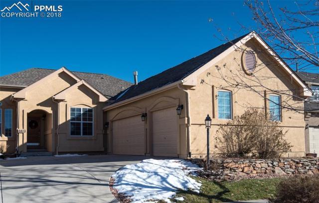 5973 Wild Bill Way, Colorado Springs, CO 80923 (#1716198) :: The Peak Properties Group