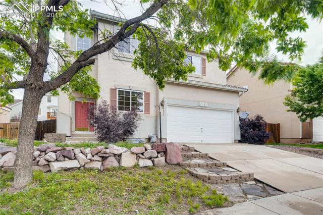 5680 Stable Court, Colorado Springs, CO 80920 (#1717280) :: Tommy Daly Home Team