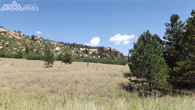 0 Tribal Drive, Palmer Lake, CO 80133 (#1724584) :: The Cutting Edge, Realtors