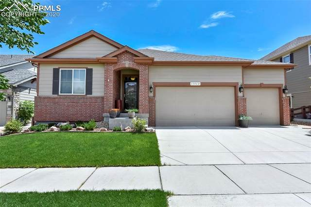 13060 Norway Maple Street, Parker, CO 80134 (#1726334) :: CC Signature Group
